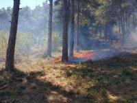 Çöpleri yakmak isterken yanlışlıkla orman yangınına sebep oldu
