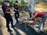 Jandarmadan piknikçilere yangın uyarısı