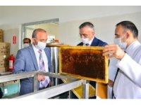Vali Hüseyin Öner, Kafkas Arısı Üretim Eğitim ve Gen Merkezi Müdürlüğünü ziyaret ederek brifing aldı