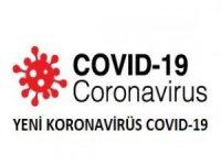 Türkiye'de test yaptırıp negatif çıkan ve Almanya'ya giden 1134 kişide corona çıktı.