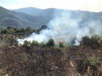 Anız yakarak 6 dönümlük araziye zarar verince cezalandırıldı
