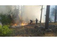 Kastamonu'da çıkan orman yangını büyümeden söndürüldü