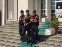Fethiye'de 5 ayrı suçtan aranan şüpheli Jandarmadan kaçamadı