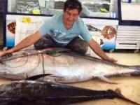 2 metre 17 santim uzunluğunda 141 kilo olan balığı görenler şaşkınlıklarını gizleyemedi.