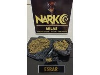 Milas'ta Narkotik ekiplerinden uyuşturucu operasyonu