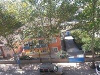 Osmancık'ta ağaçlar susuzluktan kuruyor