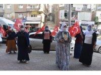 Şırnaklı anne HDP il binasına gelerek dağa kaçırılan oğlunu istedi
