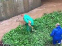 Şiddetli yağışta yolunu kaybedip su kanalına düşen karaca belediye ekipleri tarafından kurtarıldı