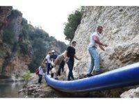 Tarsus'ta doğa yürüyüşü ilgi gördü