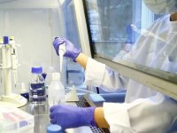 Corona virüsü aşısında son durum: Dünyanın gözü 4 aşıda
