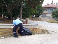 Belediyeden kent genelinde mıntıka temizliği