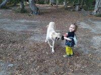 Köpekle bebeğin oyunu tebessüm ettirdi