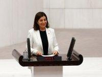 Edirne, kadına şiddeti önlemede pilot il seçildi