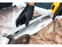 Balıkların boyları teker teker mezura ile ölçüldü