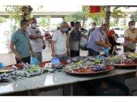 Rize'de balık tezgahlarında palamut izdihamı