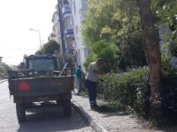 Didim'de çevre temizliği çalışmaları devam ediyor