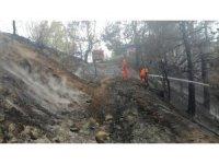 Kahramanmaraş'ta 1 hektar ormanlık alan zarar gördü