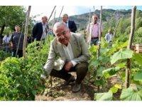 Hilmi Güler'in tarım projesi kazandırıyor