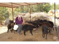 'Haydi Gel Köyümüze Destek Verelim Projesi' kadınların ve gençlerin umudu oldu