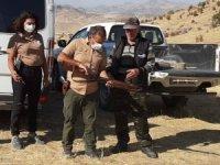 Tunceli'de av denetimi, 3 kişiye yasal işlem yapıldı