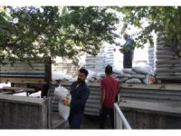 Tunceli'de çiftçilere yem bitkisi tohumu desteği