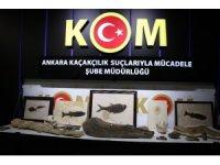 Başkent'te Adnan Oktar örgütüne 10 milyon dolarlık fosil kaçakçılığı operasyonu