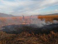 Kuş cenneti Cil Gölü'nde 10 dekarlık alan küle döndü