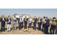 Yazıhan'da pancarının kalitesine tam not