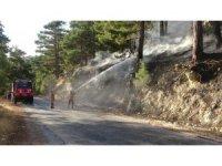 Mersin'de 1,5 hektar kızılçam ormanı zarar gördü