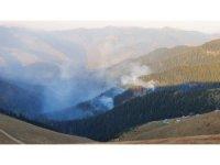 Örümcek Ormanları'ndaki yangını söndürme çalışmaları sürüyor