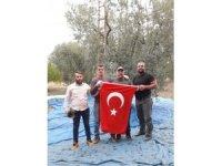 Zeytin hasadında Cumhuriyet Bayramı kutlaması