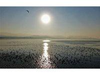 Kuşların akınına uğrayan İzmit Körfezi'nde sonbaharda kartpostallık görüntüler