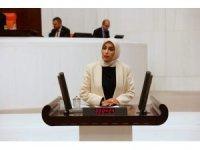 AK Parti Milletvekili Ban, NATO PA ekonomi ve güvenlik komisyonu Başkan Yardımcılığı görevine seçildi