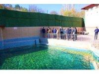 Vali Ali Çelik, Dereli Termal Turizm Merkezi'ni inceledi