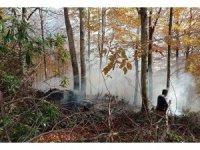 Düzce'de orman yangını 3 saatte söndürüldü