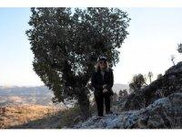 Doğaseverler, Güneydoğu'nun Kapadokya'sında