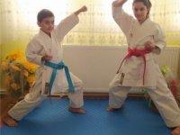 Online Karate Şampiyonası çekişmeli geçti