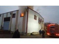 Trabzon'da soğuk hava deposunda yangın