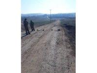 Diyarbakır'da 2 köy karantinaya alındı