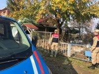 Vaka sayısı yüzde 100 artan Samsun'da polis ve jandarma ev ev denetim yapacak