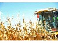 Bakan Soylu Şanlıurfa'da biçerdöverle mısır hasadı yaptı