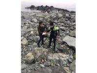Kayaların arasına sıkışan yaralı martıyı trafik polisi kurtardı