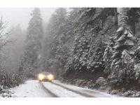 Artvin´de kar yağışı etkili oldu
