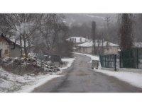 Kırklareli'ne yılın ilk karı yağdı