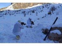 Şırnak'ta 1 yıldır haber alınamayan Hurmüz Diril'i arama çalışmaları sürüyor