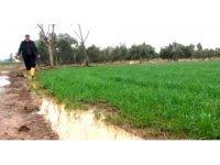 Kuraklık korkusu yaşayan çiftçinin yüzü yağmurla güldü