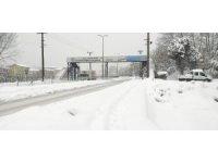 Kar yağışı tüm şehri esir aldı