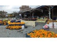 Balıkesir'de pandemi yol kenarında ürünlerini satan köylüleri de etkiledi