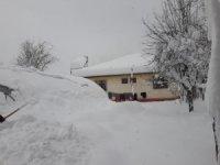 Elektrik, su ve ulaşım olmayan köyde vatandaşlar yetkililerden yardım bekliyor