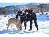 Jandarma ekipleri doğaya yem bıraktı